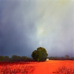My Favourite Field by Barry Hilton -  sized 24x24 inches. Available from Whitewall Galleries